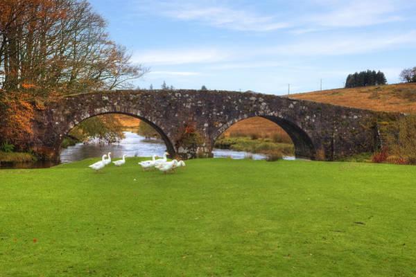 Moorland Photograph - Dartmoor - Two Bridges by Joana Kruse