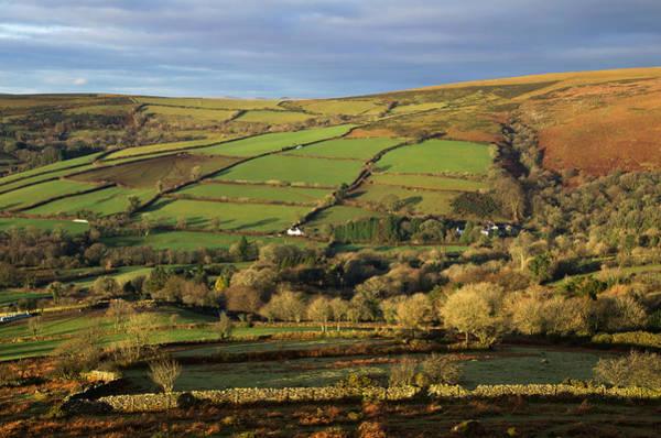 Photograph - Dartmoor From Bonehill by Pete Hemington