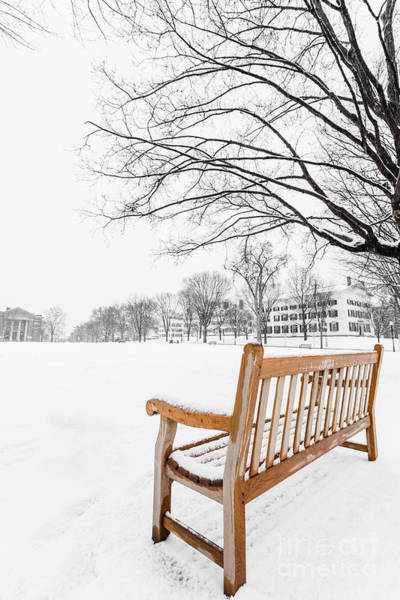 Park Bench Photograph - Dartmouth Winter Wonderland by Edward Fielding