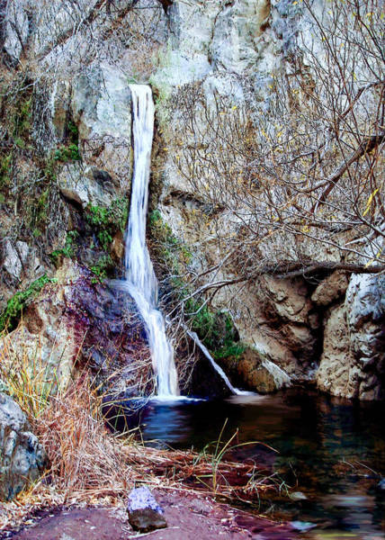 Painting - Darwin Falls Death Valley by Bob and Nadine Johnston