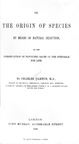 Geologist Wall Art - Photograph - Darwin's The Origin Of Species by Underwood Archives