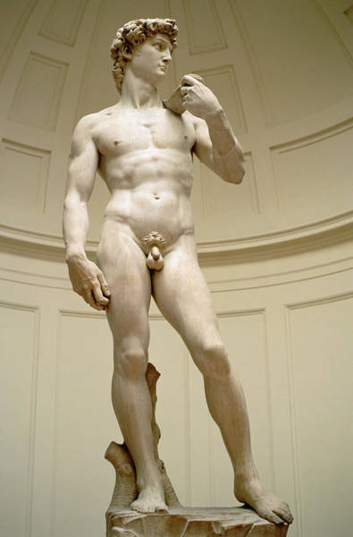 Unclothed Wall Art - Photograph - David by Michelangelo Buonarroti