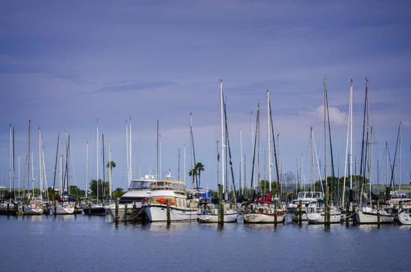 Photograph - Davis Island Yacht Club by Carolyn Marshall