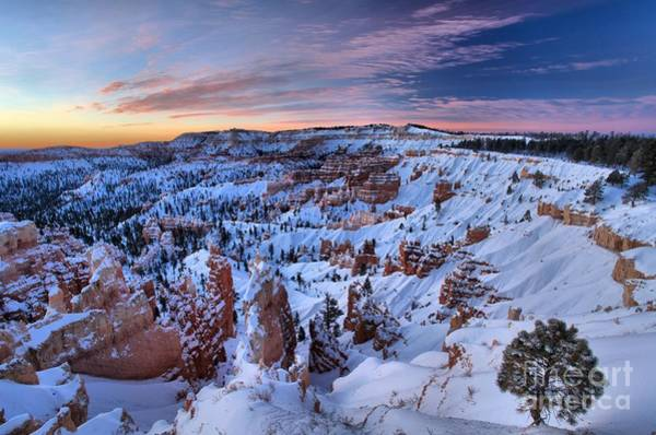 Photograph - Dawn At Bryce by Adam Jewell