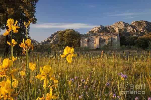 Chapelle Photograph - Dawn At Chapelle De Romanin by Brian Jannsen