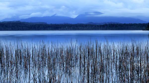 Wall Art - Photograph - Dawn At Lake Mahinapua  Hokitika, South by Nicola M Mora