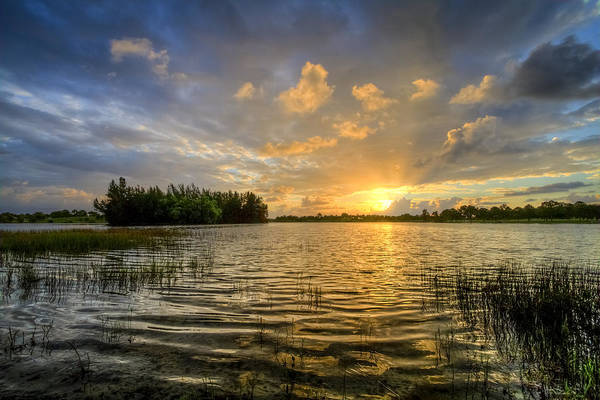 Okeeheelee Park Photograph - Dawn At The Lake by Debra and Dave Vanderlaan
