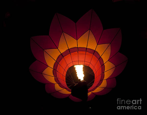 Photograph - Dawn Light by Lula Adams