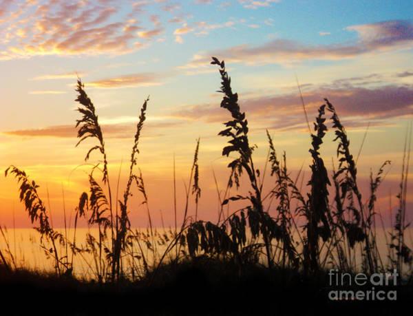 Photograph - Dawn by Megan Dirsa-DuBois