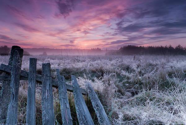 Dawn Wall Art - Photograph - Dawn Of Bialowieza Meadows by Krzysztof Lorant