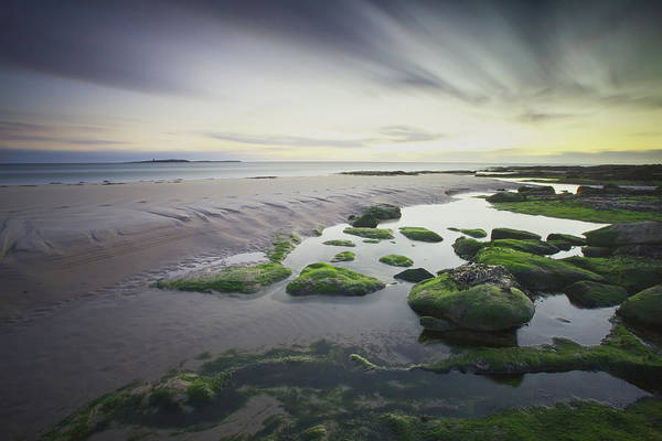 Shores Wall Art - Photograph - Dawn Over Seahouses Beach by Ray Cooper