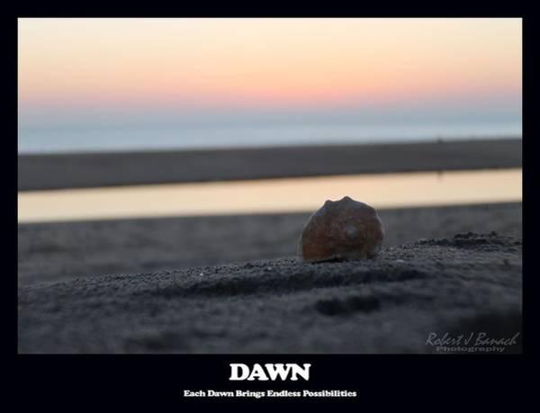 Photograph - Dawn by Robert Banach