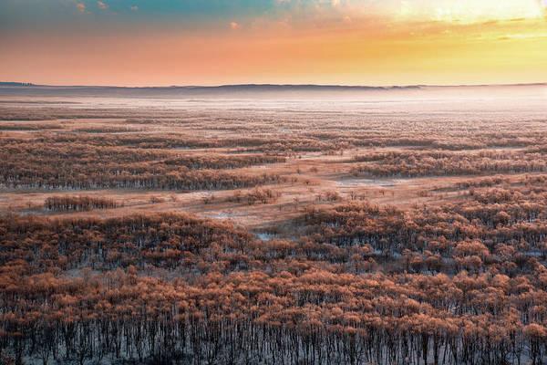 Marsh Wall Art - Photograph - Dawn by Susumu Nihashi
