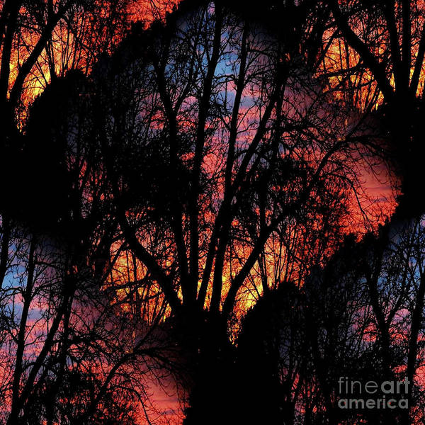 Wall Art - Photograph - Sunrise - Dawn's Early Light by Luther Fine Art