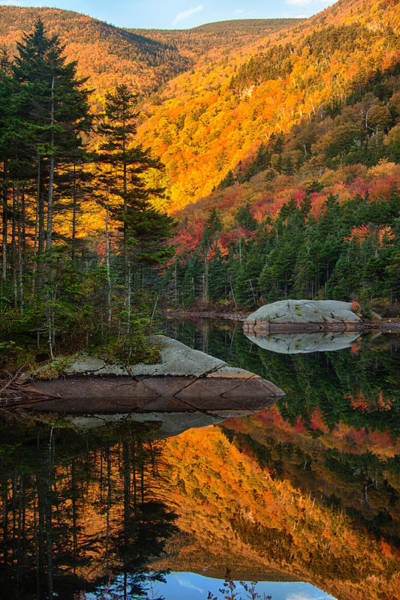 Beaver Pond Wall Art - Photograph - Dawns Foliage Reflection by Jeff Folger
