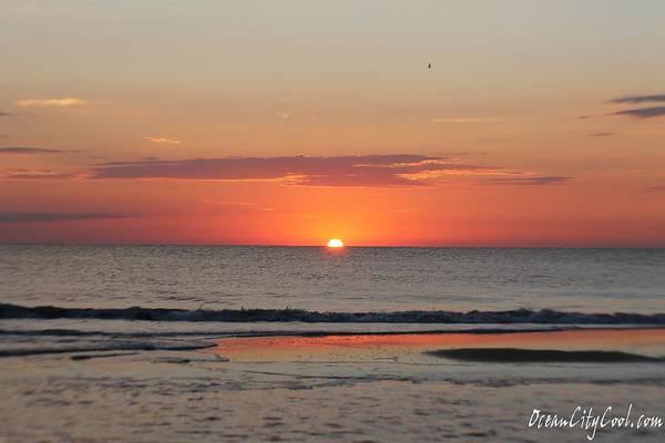Photograph - Dawn's Orange Hues by Robert Banach