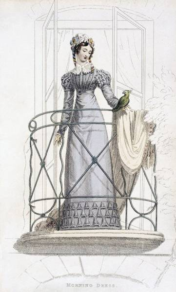 Parrot Drawing - Day Dress, Fashion Plate by English School