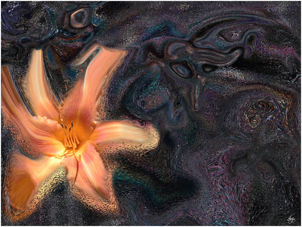 Photograph - Day Lily By Night by Wayne King