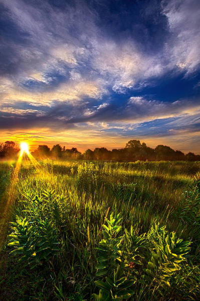 Photograph - Day Of Rest by Phil Koch
