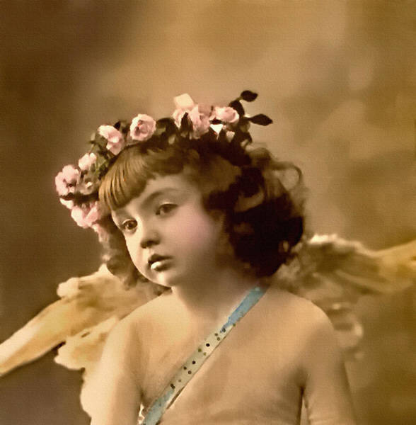 Photograph - Daydreaming Cupid by Lesa Fine