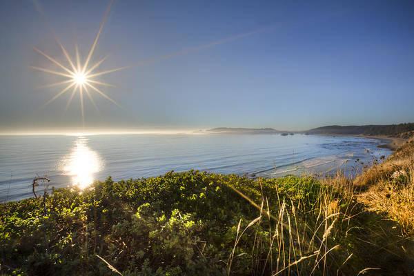 Photograph - Daylight Star by Debra and Dave Vanderlaan