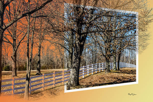 Photograph - Fence - Trees - Landscape - Daylight Till Dusk by Barry Jones