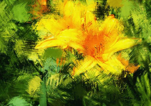 Dayliles Art Print