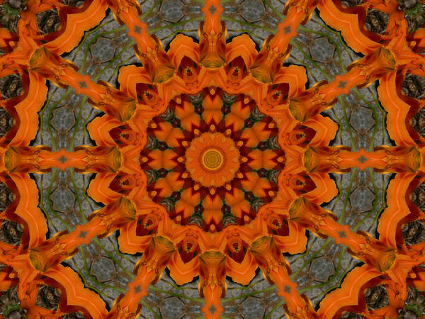 Tigerlily Wall Art - Photograph - Daylily Orange Mandala by MM Anderson