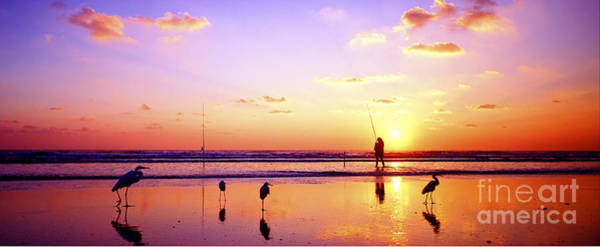 Daytona Beach Fl Surf Fishing And Birds Art Print