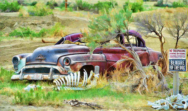 Photograph - Dead Car by David Armstrong