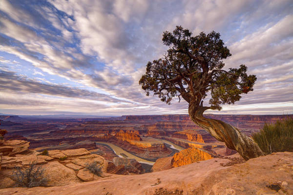 Art Print featuring the photograph Dead Horse Point Sunrise by Dustin  LeFevre