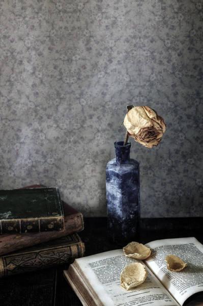 Wall Art - Photograph - Dead Rose by Joana Kruse