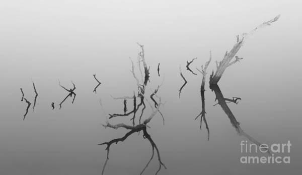 Photograph - Dead Sea by Keith Kapple