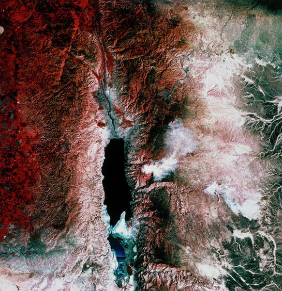 Wall Art - Photograph - Dead Sea by Mda Information Systems/science Photo Library