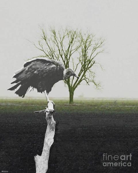 Digital Art - Dead Zone by Lizi Beard-Ward
