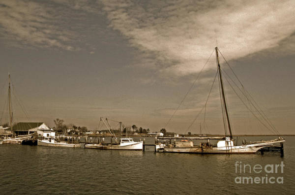 Sailing Terms Photograph - Deal Island Fishing Boats by Skip Willits