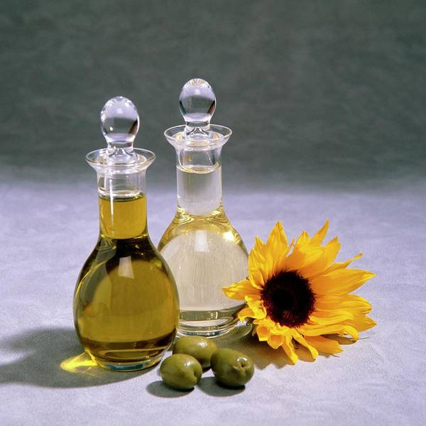 Olive Oil Photograph - Decanters Of Olive And Sunflower Oil by Sheila Terry/science Photo Library