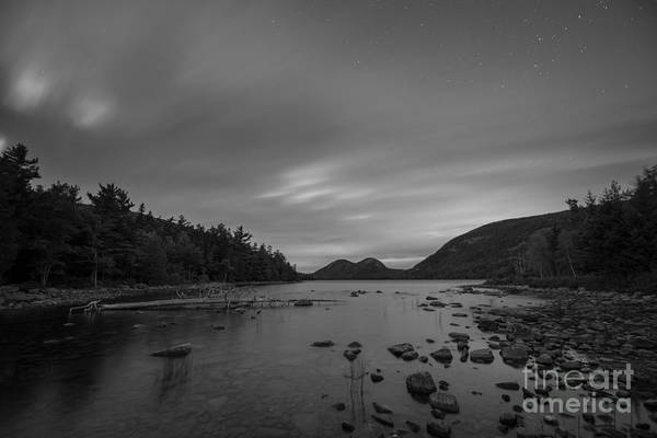 Michael Photograph - Decaying Tree At Jordan Pond by Michael Ver Sprill