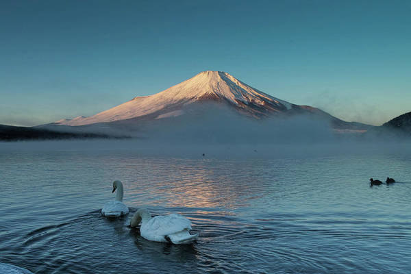 Japanese Culture Photograph - December Fuji by I Love Photo And Apple.