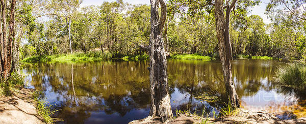 Humid Photograph - Deception Bay Creek by Jorgo Photography - Wall Art Gallery