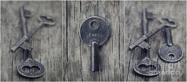 Wall Art - Photograph - decorative vintage keys I by Priska Wettstein