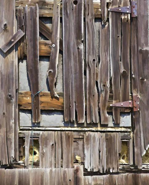 Photograph - Decrepit Barn Door by David Letts
