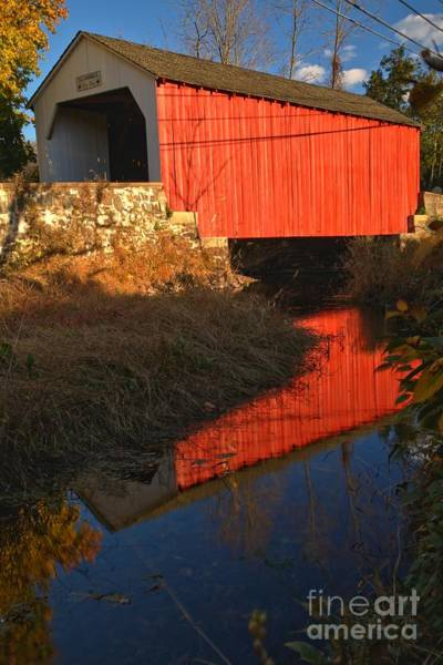 Photograph - Deep Blue Reflections At Erwinna Covered Bridge by Adam Jewell