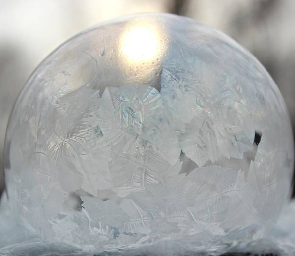 Photograph - Deep Freeze by Candice Trimble