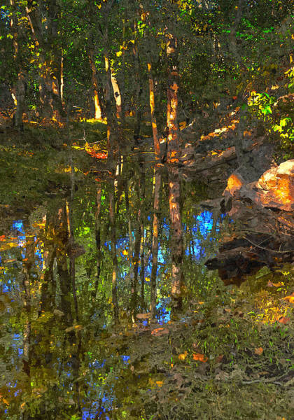 Digital Art - Deep Reflections by Rick Mosher