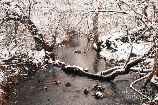 Deep Run In Winter Art Print