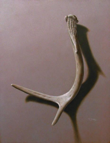 Wall Art - Painting - Deer Antler by Timothy Jones