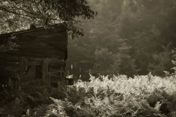 Photograph - Deer Blind by Scott Hovind