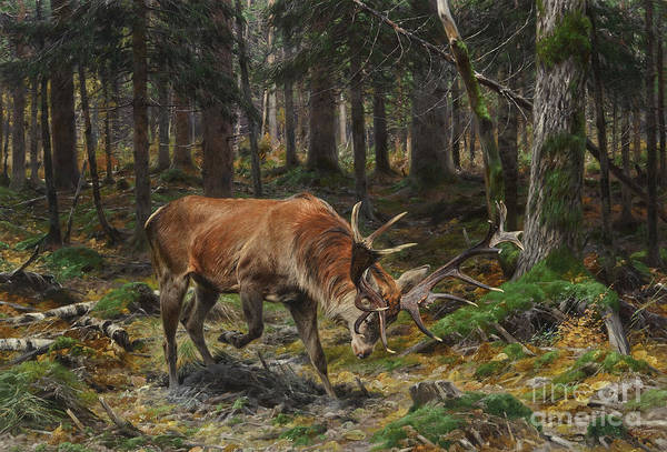 Painting - Deer In A Forest Glade by Celestial Images