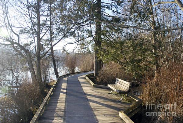 Photograph - Deer Lake Walkway by Bill Thomson